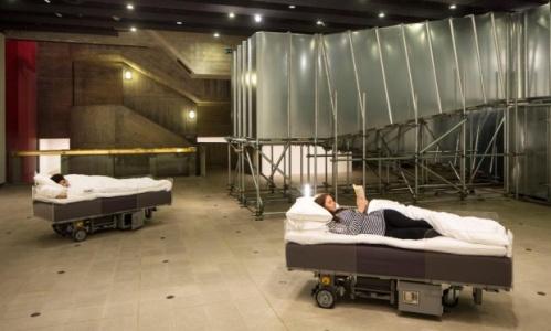 hayward beds