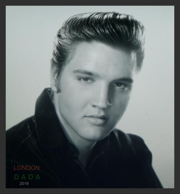 The Elvis Everyday